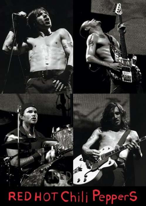 Red Hot Chili Peppers (Live) - P339