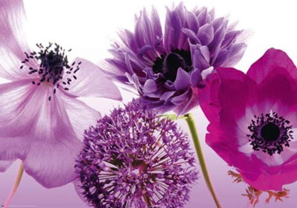 Florishing Flowers - P316