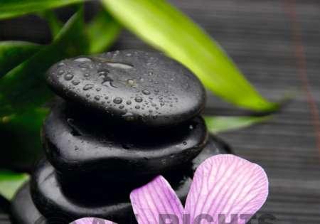 Zen Flower - P329