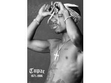 Tupac - Smoke