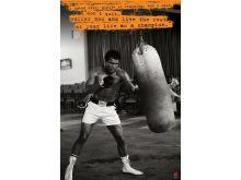 Muhammad Ali (Punchbag) - P287