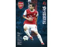 Fabregas - Arsenal - P162
