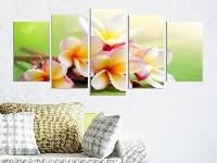 Защо да изберем декоративни пана за стена?