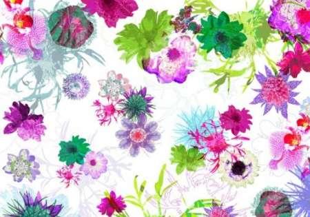 Fleurs de Paris - Komar