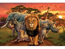 African Kingdom